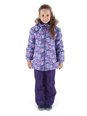 Комбинезон зимний: куртка и брюки Premont. Цвет: фиолетовый