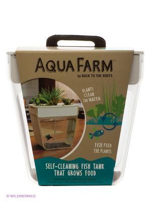 Набор для выращивания растений и ухода за рыбкой Акваферма Aquafarm. Цвет: прозрачный