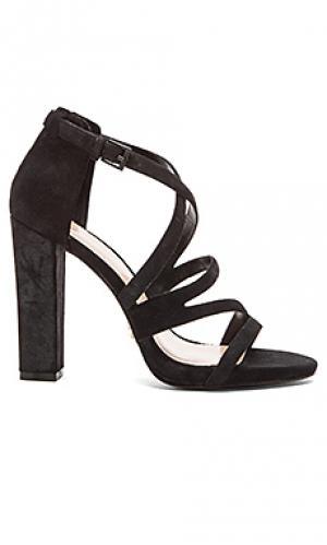 Туфли на каблуке carla Pour La Victoire. Цвет: черный