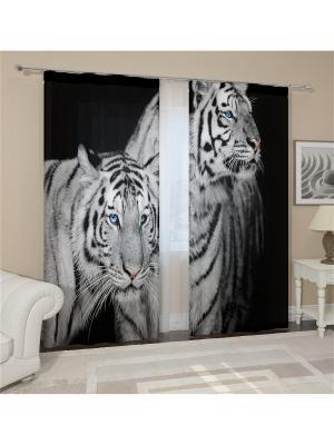 Фотошторы Два тигра Сирень. Цвет: серый, черный