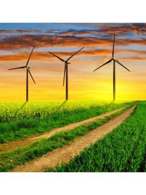 Картина Дорога с ветряками Ecoramka. Цвет: лазурный, зеленый, светло-зеленый