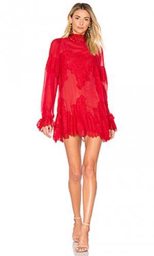 Кружевное платье queen for a day Hot As Hell. Цвет: красный