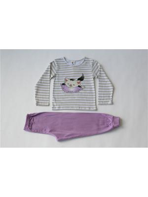 Пижама Iota. Цвет: бежевый, сиреневый