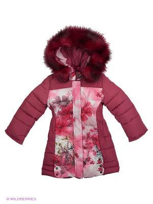 Пальто для девочки Клюковка Пралеска. Цвет: красный