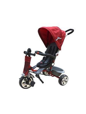 Велосипед детский, 3х-колесный с поворачивающимся сидением и тентом, красный (MT-BCL0815004) Pit Stop. Цвет: красный