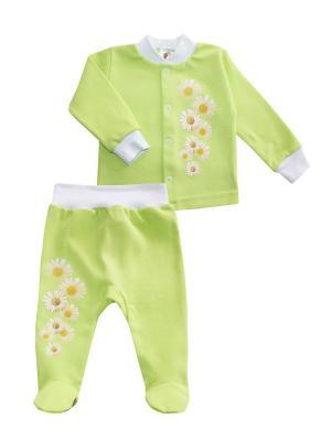 Набор одежды: кофточка, ползунки Коллекция Ромашки КОТМАРКОТ. Цвет: салатовый