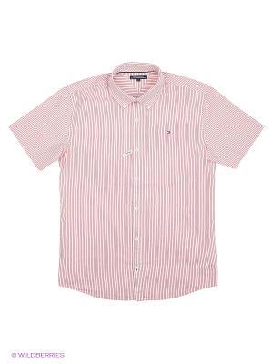 Рубашка Tommy Hilfiger. Цвет: розовый