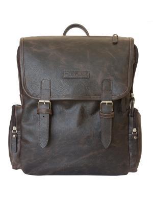 Рюкзак Carlo Gattini. Цвет: темно-коричневый