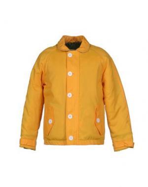 Куртка POC PEOPLE OF CANADA. Цвет: желтый