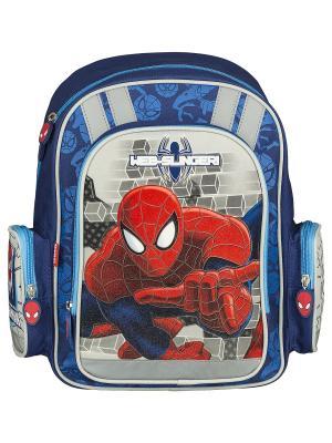 Рюкзак с эргономичной EVA-спинкой.  Spider-man Classic. Цвет: красный,синий,серый