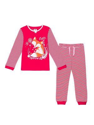 Пижама NinoMio. Цвет: малиновый