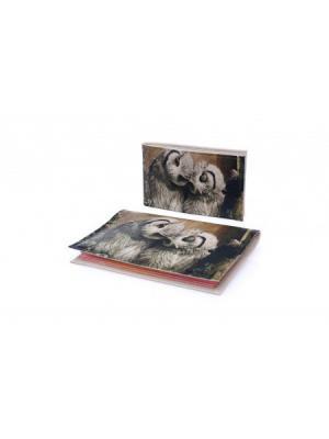 Комплект Owls in love3 (Обложка на паспорт+визитница) Eshemoda. Цвет: серо-коричневый