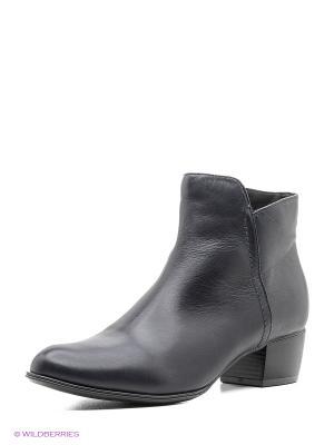 Ботинки Tervolina. Цвет: темно-синий