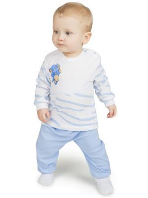 Костюм (кофта + брюки) Сафари BABYGLORY. Цвет: голубой