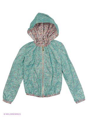 Куртка Артус. Цвет: зеленый