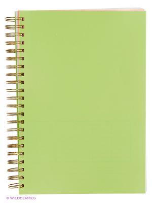 Тетрадь А4 120 листов VELD-CO. Цвет: зеленый