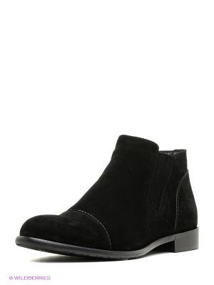 Ботинки Premier. Цвет: черный