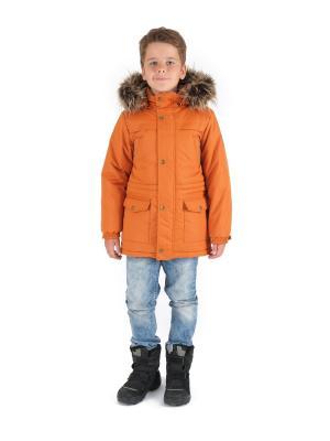 Куртка Premont. Цвет: желтый