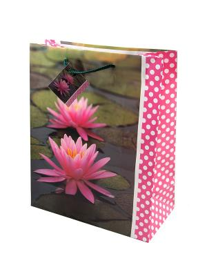 Комплект пакетов из 12шт. 26*32см Русские подарки. Цвет: хаки, серый, бронзовый