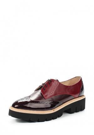 Ботинки Conhpol-Bis. Цвет: бордовый