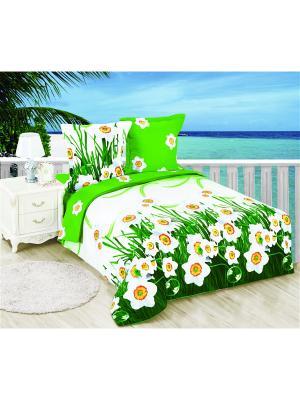 Постельное белье Narciss 2,0 сп. Amore Mio. Цвет: белый, зеленый