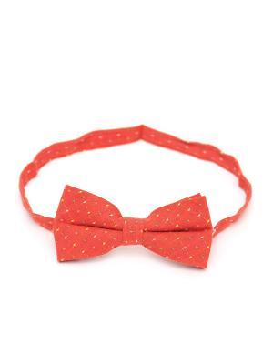 Галстук-бабочка Churchill accessories. Цвет: светло-оранжевый, оранжевый, горчичный