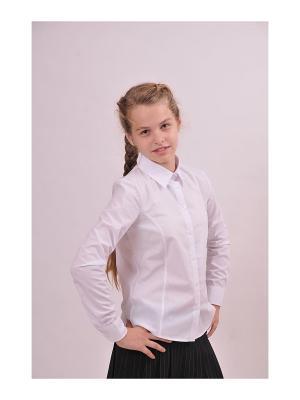 Блузка SEMICVET. Цвет: белый