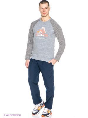 Брюки ESS STANFORD B Adidas. Цвет: темно-синий