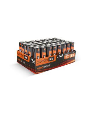 Комплект щелочных батареек АА 40шт. (алкалиновые) CANYON. Цвет: оранжевый, черный