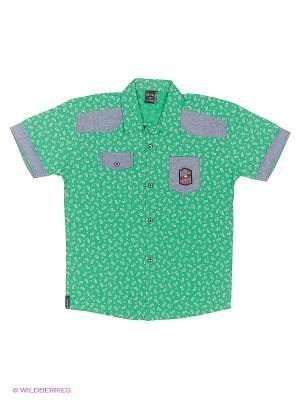 Рубашка WAXMEN. Цвет: зеленый