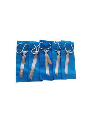 Набор сувенирных пакетиков из спанбонда с галстуком и надписью Эко-Пак-ДЗ. Цвет: синий, серебристый