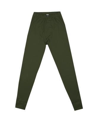 Кальсоны Classic Style Polarwolf Private. Цвет: зеленый