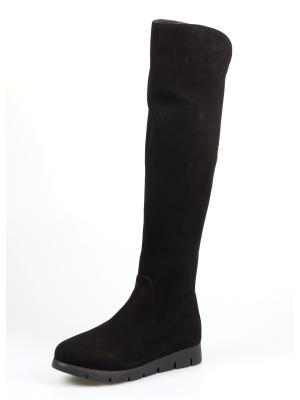 Сапоги TUFFONI. Цвет: черный
