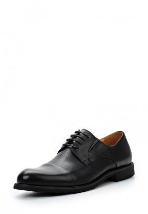 Туфли Zenden Collection. Цвет: черный