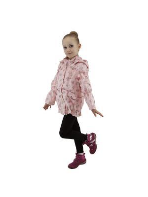 Ветровка для девочки Rusland. Цвет: розовый