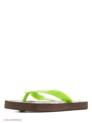 Шлепанцы LAMALIBOO. Цвет: коричневый