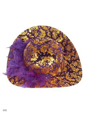 Шляпа СНОУБУМ. Цвет: фиолетовый