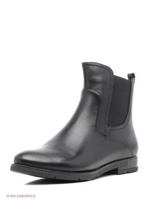Ботинки Sinta Gamma. Цвет: черный