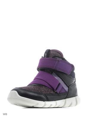 Ботинки ECCO. Цвет: черный, сиреневый