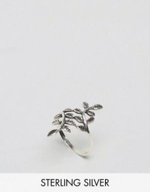 Kingsley Ryan Серебряное кольцо. Цвет: серебряный