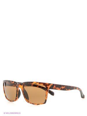 Солнцезащитные очки MS 04-019 50P Mario Rossi. Цвет: темно-коричневый
