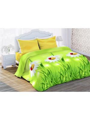 Комплект постельно белья 1,5  бязь Ромашки луговые Любимый Дом. Цвет: светло-зеленый, желтый