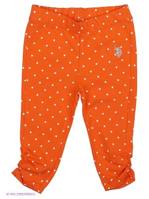 Брюки U.S. Polo Assn.. Цвет: оранжевый