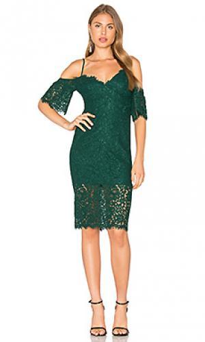 Кружевное платье karlie Bardot. Цвет: зеленый