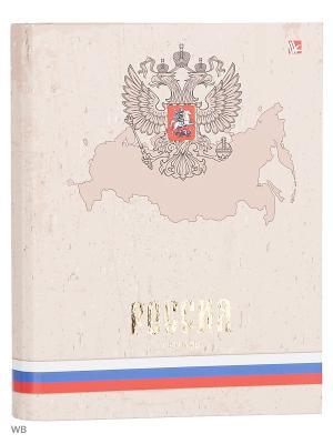 Тетрадь на кольцах 120 листов.Государственная символика. Россия Канц-Эксмо. Цвет: белый, синий, красный