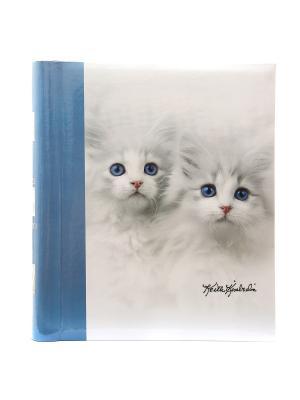 Фотоальбом 20 магнитныхлистов 23X28см, KITTENS VELD-CO. Цвет: серый, голубой