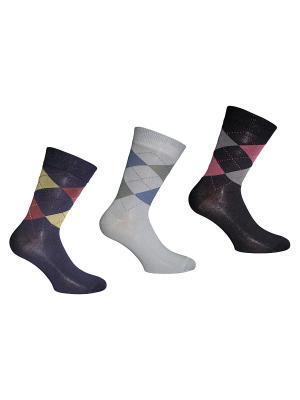 Носки 3 пары Master Socks. Цвет: серый, синий, черный