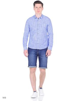 Рубашка XINT. Цвет: голубой