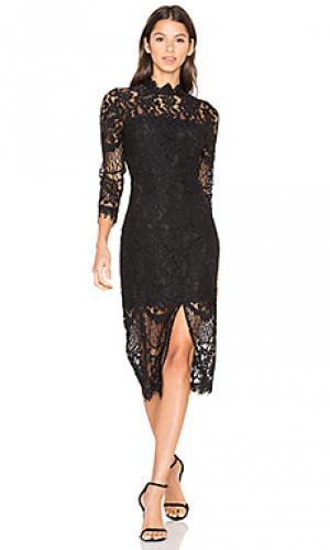 Платье leading lady Yumi Kim. Цвет: черный
