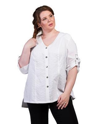 Блузка Queen Size. Цвет: белый